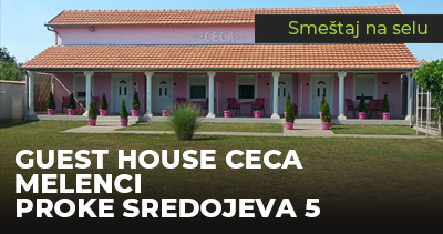 Guest House Ceca Melenci